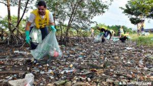 No Dia da Terra, Santos terá área de mangue recuperada